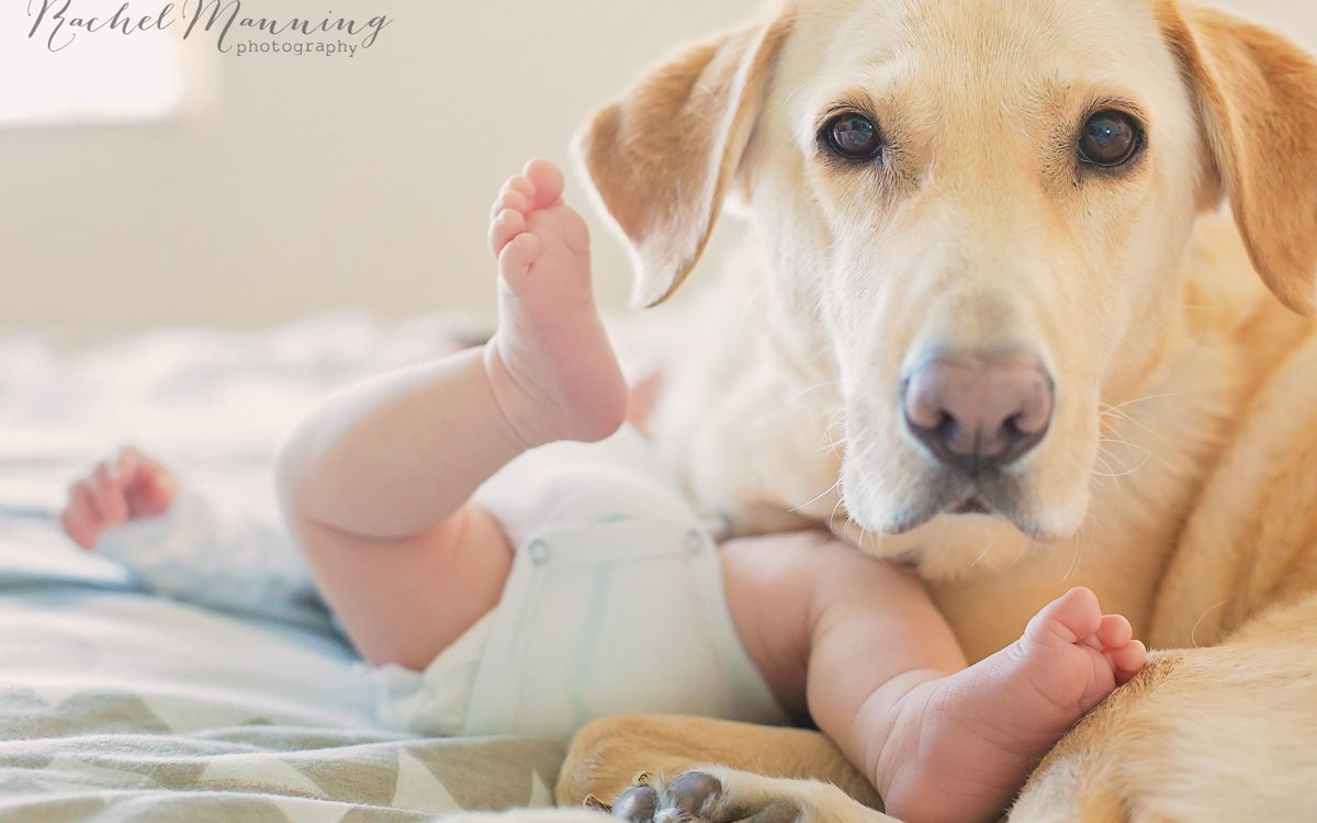 San Diego Newborn Lifestyle Photographer:  Welcome Baby Lex!