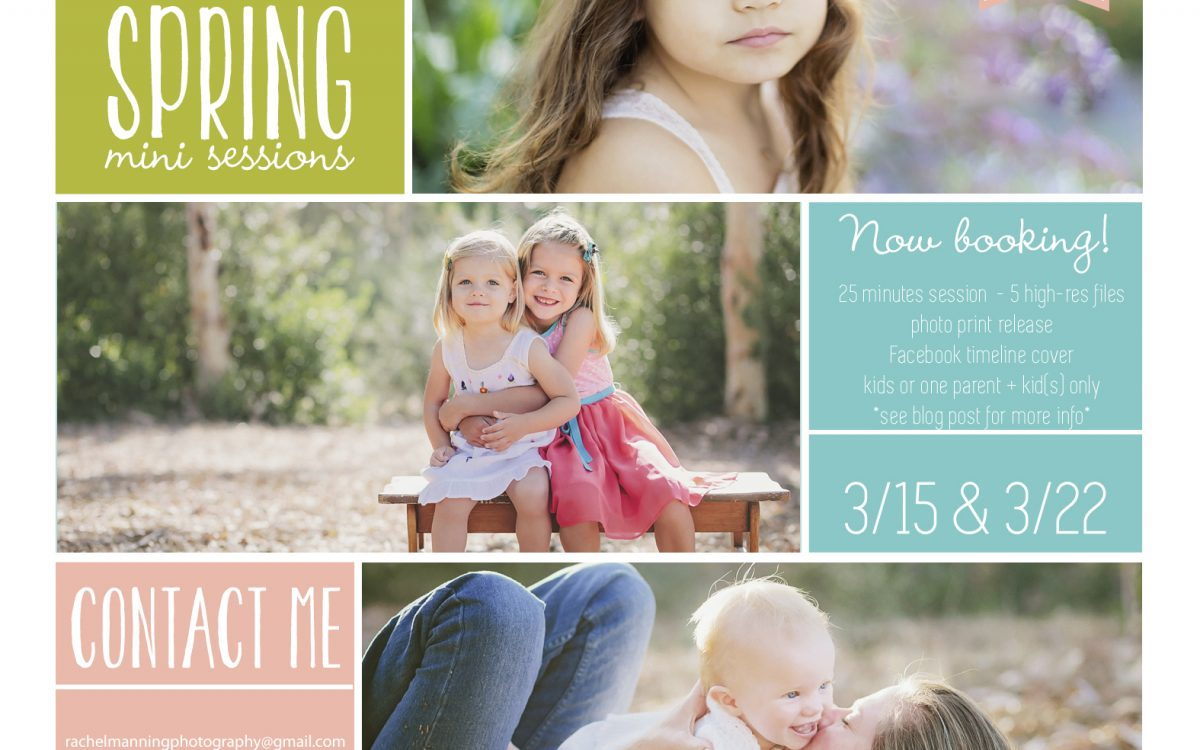 San Diego Family & Child Photographer:  Spring Wildflower Mini-Sessions