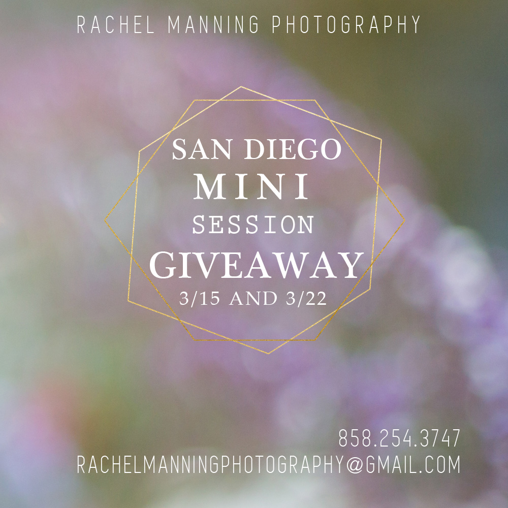 San Diego Child Portrait Photographer:  Spring Mini-Session Giveaway