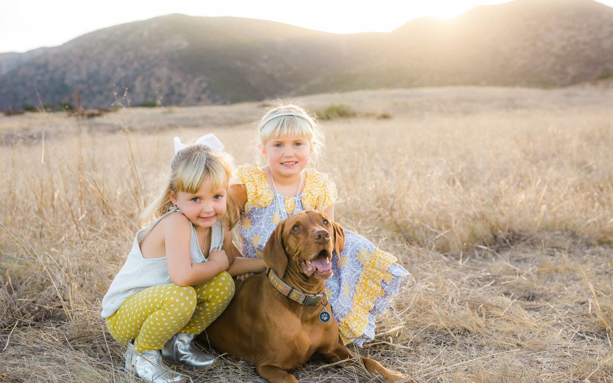 San Diego Family Photographer | San Diego Dog Photographer | San Diego Natural Light Photography | Gorgeous back-lit Family Photo Session at Mission Trails in the San Diego sunshine